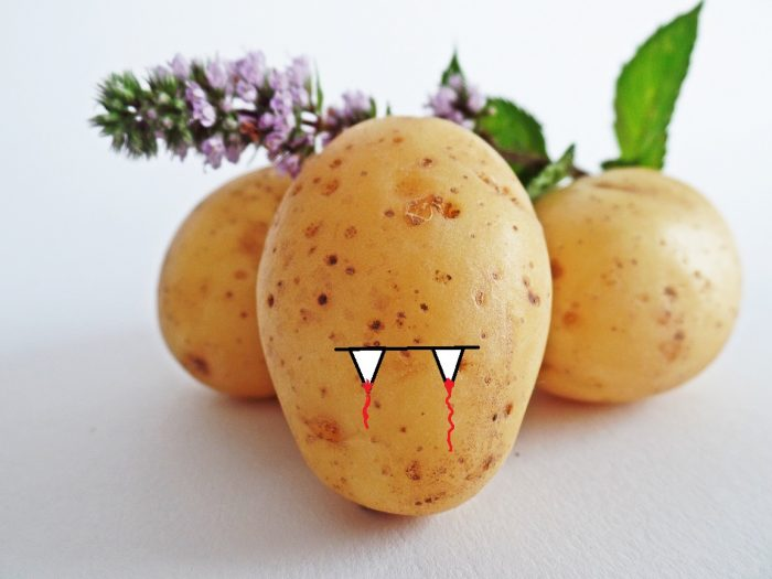 A picture of potatoes, one of which has been edited to include small vampire teeth